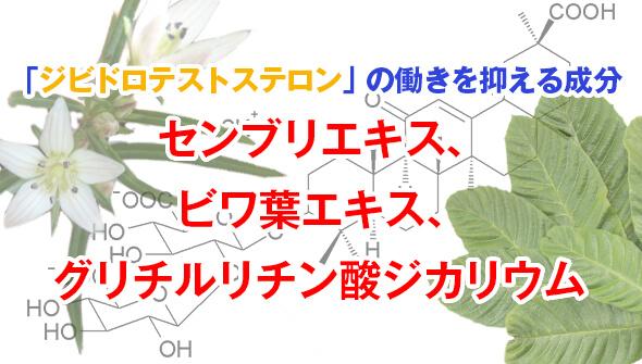 ジビドロテストステロンの働きを抑える成分